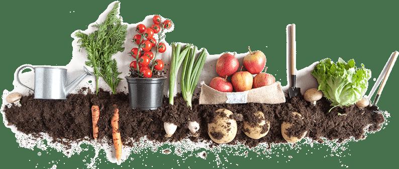 Šamp-kompost - kompost za prirodan vrt